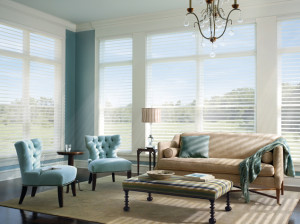 Window Shades to Maintain Your View in Baltimore