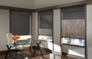Dual Roller Designer Screen Shades in the Office