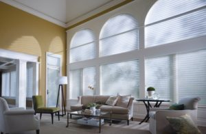 Specialty Shaped Window Treatments